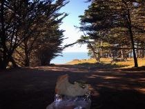 Acolo jos în față era plaja de puțișoare