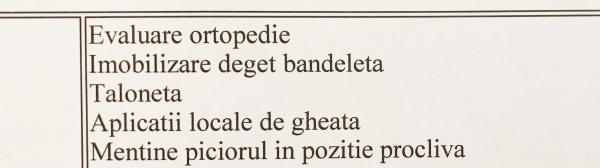 Bandeletaloneta